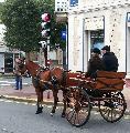 Photo n° 29319 CIAT Deauville 2013  Affichée 23 fois Ajoutée le 17/10/2013 10:16:59 par Renata  --> Cliquer pour agrandir <--