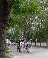Photo n° 29348 CIAT Deauville 2013  Affichée 13 fois Ajoutée le 17/10/2013 10:17:01 par Renata  --> Cliquer pour agrandir <--