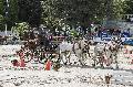 Photo n° 29613 PAU CDM Equipe de France photo Patrick Crasnier  Laurent Jélowicki Affichée 48 fois Ajoutée le 11/11/2013 09:17:51 par JeanClaudeGrognet  --> Cliquer pour agrandir <--