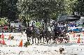 Photo n° 29637 PAU CDM Equipe de France photo Patrick Crasnier  Olivier Thiriez Affichée 40 fois Ajoutée le 11/11/2013 09:17:52 par JeanClaudeGrognet  --> Cliquer pour agrandir <--