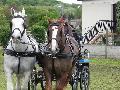 Photo n° 33100PONTPOINT 2015Affichée 32 foisAjoutée le 03/05/2015 21:14:02 par JeanClaudeGrognet--> Cliquer pour agrandir <--