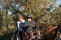 Photo n° 35699 HN Uzès Endurance attelée  photo Karine Renard  Affichée 4 fois Ajoutée le 22/02/2016 12:57:01 par JeanClaudeGrognet  --> Cliquer pour agrandir <--