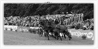 Photo n° 38049 BREDA CdM 2016 photo Heliosness  Affichée 10 fois Ajoutée le 08/09/2016 13:59:06 par JeanClaudeGrognet  --> Cliquer pour agrandir <--
