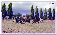 Photo n° 38163ALIXAN 2016Affichée 22 foisAjoutée le 17/09/2016 08:38:26 par JeanClaudeGrognet--> Cliquer pour agrandir <--
