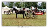 Photo n° 38180ALIXAN 2016 photo HéliosnessAffichée 7 foisAjoutée le 19/09/2016 09:59:54 par JeanClaudeGrognet--> Cliquer pour agrandir <--