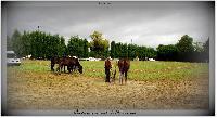 Photo n° 38199ALIXAN 2016 photo HéliosnessAffichée 9 foisAjoutée le 21/09/2016 08:04:28 par JeanClaudeGrognet--> Cliquer pour agrandir <--