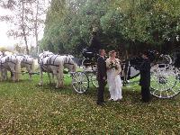 Photo n° 38476Le mariage d'Aline MassonSix boulonnais menés par Sébastien VincentAffichée 65 fois, 2 votesAjoutée le 27/10/2016 09:36:07 par JeanClaudeGrognet