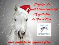 Photo n° 38480 Bonne année à tous !  Affichée 6 fois Ajoutée le 02/01/2017 12:57:51 par JeanClaudeGrognet  --> Cliquer pour agrandir <--