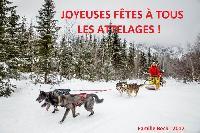 Photo n° 38490 Bonne année à tous !  Affichée 7 fois Ajoutée le 02/01/2017 12:57:51 par JeanClaudeGrognet  --> Cliquer pour agrandir <--
