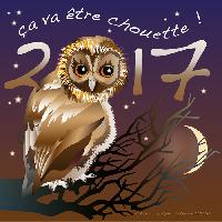 Photo n° 38507 Bonne Année attelage.org - Catherine Feissel  Affichée 11 fois Ajoutée le 03/01/2017 14:00:08 par JeanClaudeGrognet  --> Cliquer pour agrandir <--