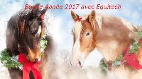 Photo n° 38508 Les voeux de Jean Pierre Demaison - Equitech  Affichée 13 fois Ajoutée le 03/01/2017 17:10:27 par JeanClaudeGrognet  --> Cliquer pour agrandir <--