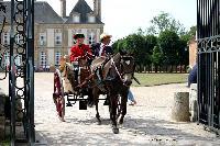 Photo n° 40746CIAT Haras National du Pin 2017 Photo N. TOUDICSabine CHEENNE (F) Poney Français de Selle. GardenAffichée 20 foisAjoutée le 11/07/2017 12:22:18 par Nadinetoudic--> Cliquer pour agrandir <--