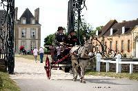 Photo n° 40758CIAT Haras National du Pin 2017 Photo N. TOUDICMarc PUITZ (F) Ane du Cotentin. Charrette AnglaiseAffichée 25 foisAjoutée le 11/07/2017 12:22:18 par Nadinetoudic--> Cliquer pour agrandir <--