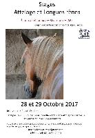 Photo n° 43059 Rivarennes stage  Affichée 5 fois Ajoutée le 04/10/2017 08:29:08 par JeanClaudeGrognet  --> Cliquer pour agrandir <--