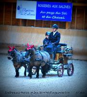 Photo n° 43211 Rosières aux Salines 2018 photo  Juliette Mos   Affichée 2 fois Ajoutée le 31/01/2018 08:10:55 par JeanClaudeGrognet  --> Cliquer pour agrandir <--