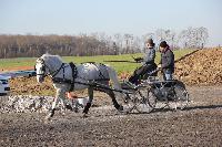 Photo n° 43343 Stage Bois de Lihus 17-18/2 avec Michaël Sellier Pascaline Miannay Affichée 1 fois Ajoutée le 19/02/2018 08:01:57 par JeanClaudeGrognet  --> Cliquer pour agrandir <--