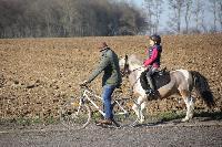Photo n° 43346 Stage Bois de Lihus 17-18/2 avec Michaël Sellier  Affichée 6 fois Ajoutée le 19/02/2018 08:01:57 par JeanClaudeGrognet  --> Cliquer pour agrandir <--