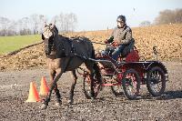 Photo n° 43358 Stage Bois de Lihus 17-18/2 avec Michaël Sellier Antoine Venet Affichée 2 fois Ajoutée le 19/02/2018 08:01:58 par JeanClaudeGrognet  --> Cliquer pour agrandir <--