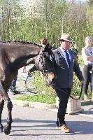 Photo n° 43773KRONENBERG  ambiance vétérinaireMattieu Ory DegommeAffichée 4 fois, 0 voteAjoutée le 19/04/2018 13:03:35 par JeanClaudeGrognet