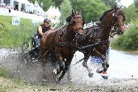 Photo n° 44929SAUMUR 2018 photo JP Giraud www.photovendee85.frVan Eijk Stan (NED)Affichée 2 fois, 0 voteAjoutée le 16/06/2018 00:02:26 par JeanClaudeGrognet