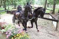Photo n° 44946 SAUMUR 2018 photo JP Giraud www.photovendee85.fr Dimer Daniel  Affichée 13 fois Ajoutée le 16/06/2018 00:02:27 par JeanClaudeGrognet  --> Cliquer pour agrandir <--