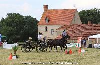 Photo n° 45204 CAT La Chevillonière JP Giraud - photovendee85.fr  Affichée 15 fois Ajoutée le 11/07/2018 13:29:53 par JeanClaudeGrognet  --> Cliquer pour agrandir <--