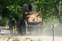 Photo n° 47545 CUTS-COMPIEGNE le camion d'Emmanuel Vantroys photo Pixel Visuel Affichée 2 fois Ajoutée le 03/06/2019 17:11:34 par JeanClaudeGrognet  --> Cliquer pour agrandir <--