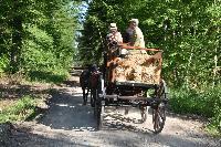 Photo n° 47551 CUTS-COMPIEGNE le camion d'Emmanuel Vantroys photo Pixel Visuel Affichée 7 fois Ajoutée le 03/06/2019 17:11:35 par JeanClaudeGrognet  --> Cliquer pour agrandir <--