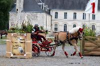 Photo n° 48620 Abbaye du Valasse 2019. Photo Nadine TOUDIC Sylvie DUBOIS Affichée 4 fois, 1 vote Ajoutée le 12/08/2019 18:29:01 par Nadinetoudic  --> Cliquer pour agrandir <--