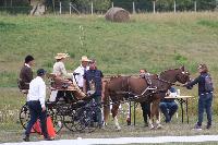 Photo n° 49134 KISBER CdM poneys - photo Delphine  Claire Lefort, tout une équipe tendue vers la performance Affichée 18 fois Ajoutée le 26/09/2019 09:06:00 par JeanClaudeGrognet  --> Cliquer pour agrandir <--