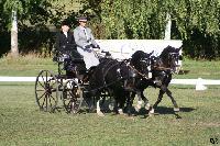 Photo n° 49135 KISBER CdM poneys Jean Frédéric Selle Affichée 40 fois Ajoutée le 27/09/2019 08:30:50 par JeanClaudeGrognet  --> Cliquer pour agrandir <--