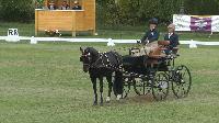 Photo n° 49139 KISBER CdM poneys  Pilj Tamara (Ned) vainqueur du dressage 1 poney  Affichée 21 fois Ajoutée le 27/09/2019 17:00:04 par JeanClaudeGrognet  --> Cliquer pour agrandir <--