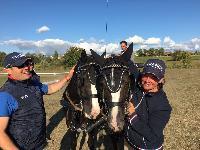 Photo n° 49148 KISBER CdM poneys équipe Delphine de Jotemps  Affichée 52 fois Ajoutée le 28/09/2019 09:14:08 par JeanClaudeGrognet  --> Cliquer pour agrandir <--