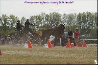 Photo n° 49174 Meslay du Maine CdF trait 2019 photo  M.A Jeanjean  Affichée 6 fois Ajoutée le 06/10/2019 08:52:47 par JeanClaudeGrognet  --> Cliquer pour agrandir <--