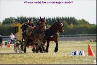 Photo n° 49177 Meslay du Maine CdF trait 2019 photo  M.A Jeanjean  Affichée 4 fois Ajoutée le 06/10/2019 08:52:47 par JeanClaudeGrognet  --> Cliquer pour agrandir <--