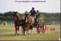 Photo n° 49202 Meslay du Maine CdF trait 2019 photo  M.A Jeanjean  Affichée 4 fois Ajoutée le 06/10/2019 08:52:47 par JeanClaudeGrognet  --> Cliquer pour agrandir <--