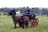 Photo n° 49242 La tradition au PIN-AU-HARAS 2019 Photo N. TOUDIC Christian GOLIARD. Voiture dos à dos attelée à 2 poneys Dartmoor Affichée 7 fois Ajoutée le 16/10/2019 13:50:12 par Nadinetoudic  --> Cliquer pour agrandir <--