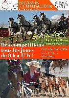 Photo n° 49318 vos affiches 2019  Affichée 2 fois, 0 vote Ajoutée le 06/12/2019 15:50:37 par JeanClaudeGrognet