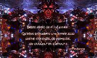 Photo n° 49336   Affichée 17 fois Ajoutée le 17/12/2019 08:55:08 par JeanClaudeGrognet  --> Cliquer pour agrandir <--
