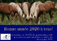 Photo n° 49353   Affichée 4 fois, 0 vote Ajoutée le 09/01/2020 08:10:34 par JeanClaudeGrognet