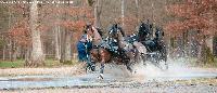 Photo n° 49784 Stage Fédéral 01/ 2020  photo Mélanie Guillamot Sébastien Vincent Affichée 4 fois Ajoutée le 21/02/2020 08:47:03 par JeanClaudeGrognet  --> Cliquer pour agrandir <--