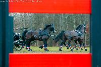 Photo n° 49797 Stage Fédéral 01/ 2020  photo Mélanie Guillamot Thibault Coudry Affichée 5 fois Ajoutée le 21/02/2020 08:47:03 par JeanClaudeGrognet  --> Cliquer pour agrandir <--