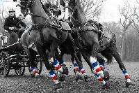 Photo n° 49806 Stage Fédéral 01/ 2020  photo Mélanie Guillamot Thibault Coudry Affichée 5 fois Ajoutée le 21/02/2020 08:47:04 par JeanClaudeGrognet  --> Cliquer pour agrandir <--