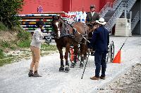 Photo n° 50124 SAINT-LO Septembre 2020. Photo N. TOUDIC Hervé MASSU, commissaire Affichée 3 fois Ajoutée le 18/09/2020 11:28:27 par Nadinetoudic  --> Cliquer pour agrandir <--