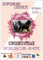 Photo n° 50460 Lisieux  Affichée 3 fois Ajoutée le 24/05/2021 10:37:21 par JeanClaudeGrognet  --> Cliquer pour agrandir <--