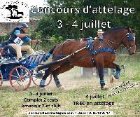 Photo n° 50669 Forcalquier 2021  Affichée 3 fois Ajoutée le 24/06/2021 08:42:04 par JeanClaudeGrognet  --> Cliquer pour agrandir <--