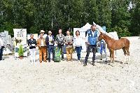 Photo n° 50890  EQWOS concours Interreg foals modèles et allures  Affichée 7 fois, 1 vote Ajoutée le 13/08/2021 08:07:27 par Invité